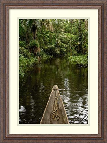 Framed Wall Art Print Dugout Canoe in Blackwater Stream Yasuni National Park Amazonia Ecuador by Pete Oxford 18.25 x 24.38 (Best Wood For Dugout Canoe)