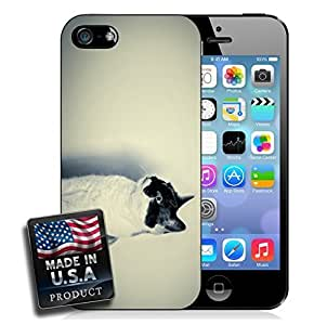 Black and White Cat Kitten Kitty Cat Photography For Iphone 5C Phone Case Cover Hard Case