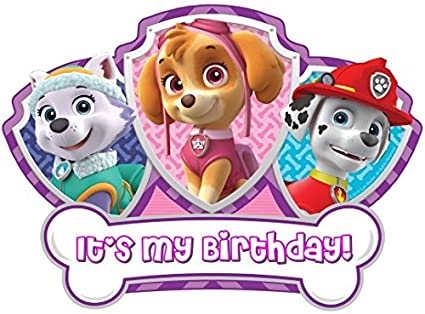 bc7ae963327 Amazon.com : PAW Patrol - Birthday Girl - For Light-Colored Materials -  Everest Skye Marshall - Iron On Heat Transfer 7