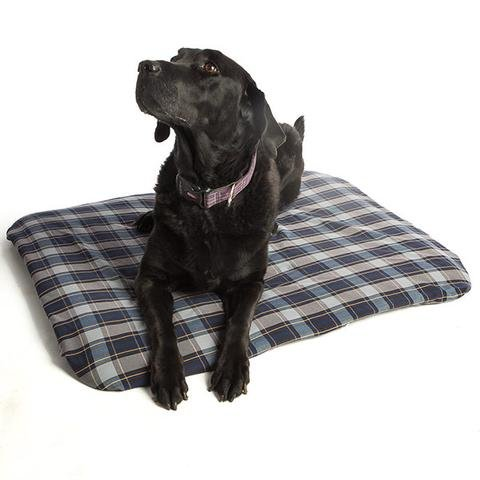 ProMagnet Magnetic Therapy Pet Bed (Medium) Cotton Cover For Sale