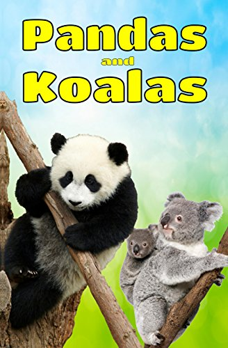 Childrens Books Pandas And Koalas Facts Information Beautiful Pictures About