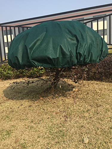HGmart Round Frost Protection Plant Cover Fabric Frost Blanket Outdoor Shrub Jacket for Winter Frost Cold, 0.95oz Dia6',Dark -