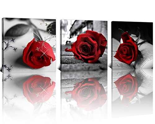 red and black roses - 5