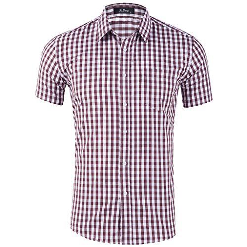 Landscap_Men Shirts Short Sleeve Button Down Summer Beach Slim Fit Workout Plaid Stripe Tee with Pockets (Brown,L)