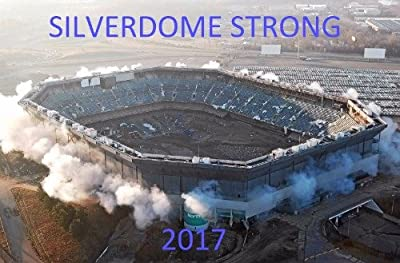 PONTIAC SILVERDOME STRONG 2017 FUNNY GLOSSY POSTER PICTURE PHOTO BANNER detroit implosion lions
