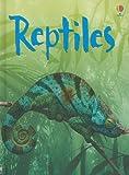 Reptiles (Usborne Beginners: Level 2)