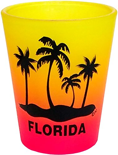 PALM TREE FLORIDA SHOT GLASS COLLECTABLE SOUVENIR NOVELTY GIFT 16YP