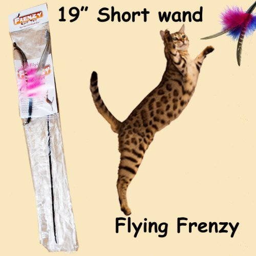 """Flying Frenzy Interactive Feather Cat Toy - 19"""" Single Length Rod"""