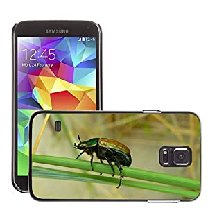 Super Stella Slim PC Hard Case Cover Skin Armor Shell Protection // M00105810 Beetle Insect Climb Insect Macro // Samsung Galaxy S5 S V SV i9600 (Not Fits S5 ACTIVE)