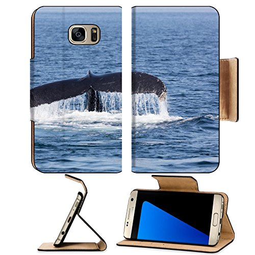 (Luxlady Premium Samsung Galaxy S7 Edge Flip Pu Wallet Case ID: 45075561 Whale in Provincetown Cape Cod Massachussetts United States)