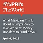 What Mexicans Think about Trump's Plan to Take Workers' Money Transfers to Fund a Wall | David Leveille
