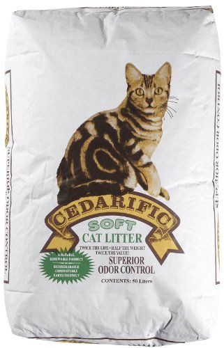the best natural kitty litter