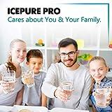 ICEPURE PRO NSF 53&42 Certified UKF8001