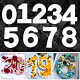 14 inch 0-9 Number Cake Molds for DIY Cake Stencils, Arabic Number Cake Templates for DIY Wedding Birthday Anniversary Cake