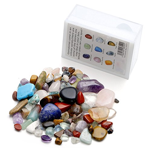 Tumbled Polished Natural Assorted Plastic