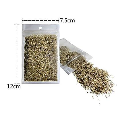 Aubess - Semillas de planta acuática para decoración de acuario y alimento para peces (césped