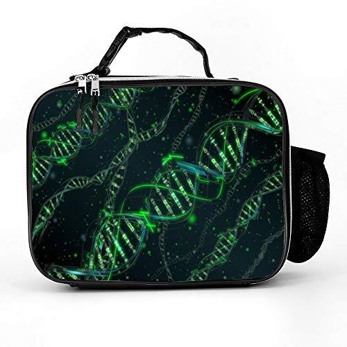 패딩 라이너와 DNA 과학 도시락 상자 넓은 절연 점심 가방 소년 남성 여성 소녀 성인을위한 내구성 열 점심 쿨러 팩