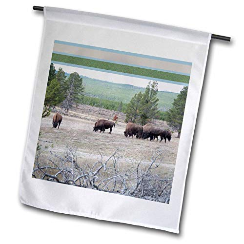 3dRose Jos Fauxtographee- Framed Top Bison Foraging - A Feild of Bison grazing on The Grass in Yellowstone with top Frame - 18 x 27 inch Garden Flag (fl_294261_2)