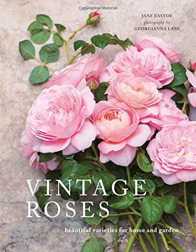 Vintage Roses: Beautiful Varieties for Home and Garden [Jane Eastoe] (Tapa Dura)