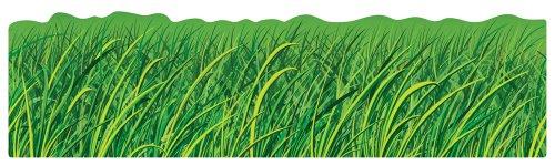 Carson Dellosa Grass Borders (110072) Bulletin Board Sets Big Borders