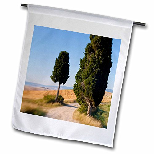 danita-delimont-italy-winding-road-val-d-orica-tuscany-italy-18-x-27-inch-garden-flag-fl-227671-2