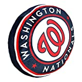 The Northwest Company Washington Nationals MLB 15in Cloud Travel Pillow