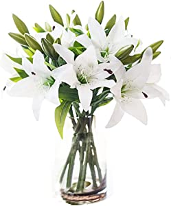 LNHOMY Artificial Lily Latex Real Touch Flowers Fake Full Bloom Flowers with 3 Heads for Home Wedding Party Decor,Pack of 6 (White)