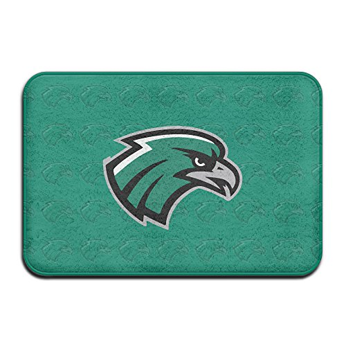 VDSEHT Northeastern State Riverhawks Logo Non-slip Doormat ()