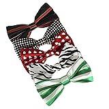 DBF0146 Gentlemen Pre-Tied Bowties Multiple Stylies Microfiber 5 Pack Set Bow ties By Dan Smith