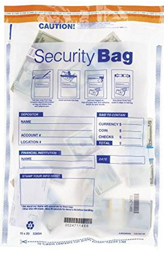 EGP Large Clear Single Pocket Bank Deposit Bag (100 Bags), 15'' x 20'' by EGPChecks