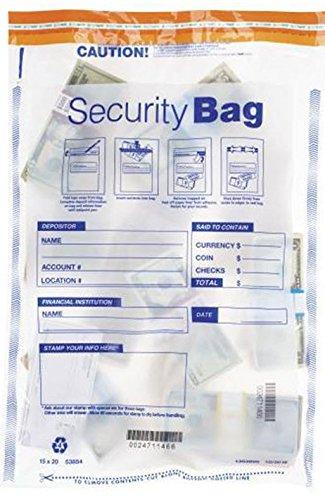 EGP Large Clear Single Pocket Bank Deposit Bag by EGPChecks