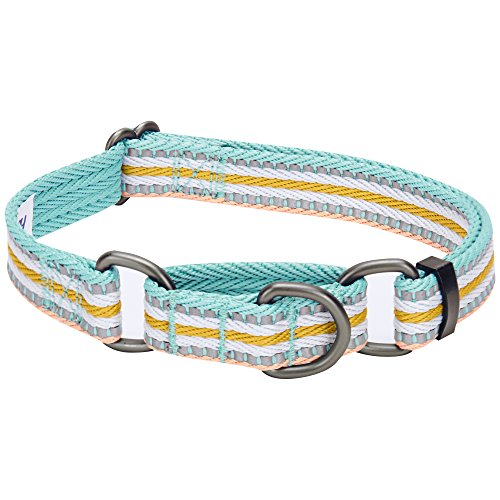 Stripe Martingale Dog Collar - Blueberry Pet 8 Colors 3M Reflective Multi-Colored Stripe Safety Training Martingale Dog Collar, Pastel Blue and Beige, Large, Heavy Duty Adjustable Collars for Dogs