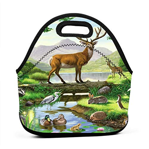 Janeither Nature Forest Animals Meeting Portable Reusable Lunch Bag Waterproof Picnic Tote Insulated Cooler Zipper - Dvd Baby Nba
