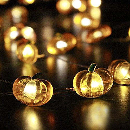 Impress Life Harvest Pumpkin String Lights, Christmas Decoration 10 ft Copper Wire 40 LEDs Battery Operated with Remote Timer for Thanksgiving, Fall Wedding, Canopy Tent, Centerpiece, Camping,