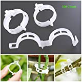 AKOAK 100 Pcs Plant Support Clips for Garden Tomato Garden Vegetables Vine to Grow Upright and Makes Plants Healthier Twine Clips