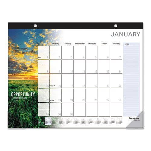 "AT-A-GLANCE Desk Pad Calendar 2017, Monthly, 21-3/4 x 17"", Successories Motivational (SKW800-00)"