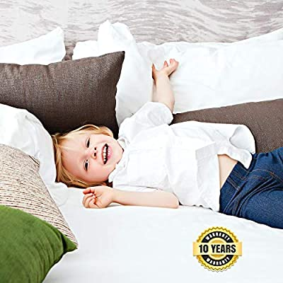 Waterproof White CO-Z Mattress Protector with Zipper Closure 6-Sided Cover Queen Size Machine Washable Bed Bug /& Dust Mite Proof 100/% Polyester Knit Fabric Encasement