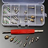 Vivona Hardware & Accessories 33Pcs Air Conditioning Valve Core +1Pc Remover Tool for A/C System