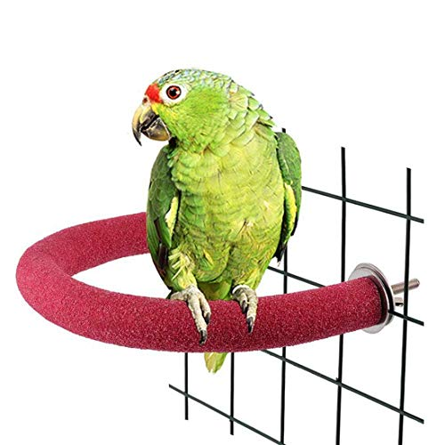 U Type Flexible Pet Parrot Frosting Stand Rack Grinding Scrub Stick Parrot Rod Bird Cage Claw Toy Standing Bar Curved Corner