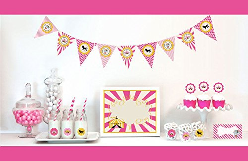 Circus Decorations Starter Kit Birthday Favors (3, Pink) by Eventblossom