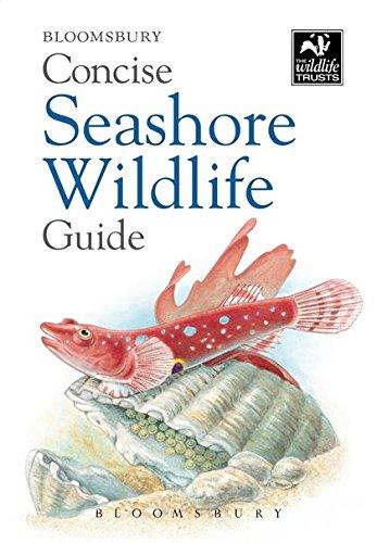 Concise Seashore Wildlife Guide (The Wildlife Trusts) ebook
