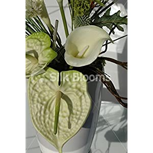 Modern Green & Cream Anthurium & Calla Lily Vase Display 2