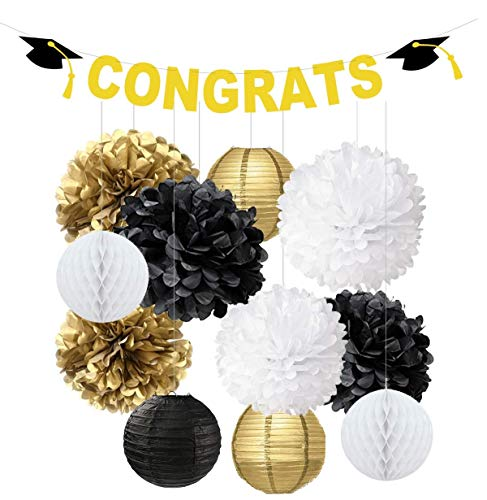 Swibitter 2019 Graduation Party Decorations Gift Set - Hanging Paper Pom Pom, Birthday Party Decorations Kit, Honeycomb for Wedding Baby Shower Bridal Event Office Mental Table Decor -
