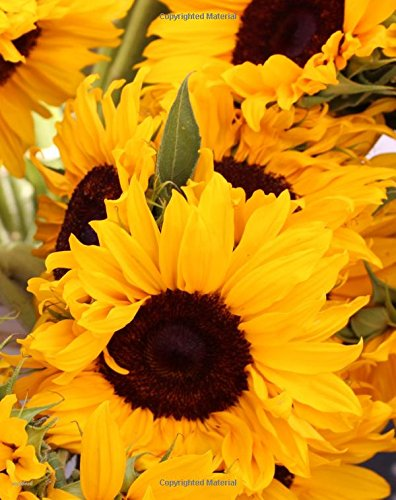 Download notebook: sunflower cover, 80 lined pages, 8 x 10, glossy cover PDF