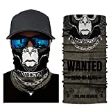 Unisex Motorcycle Mask,Windpoof Sun Screen Cycling Balaclava 3D Ski Skull Print Mask Zulmaliu