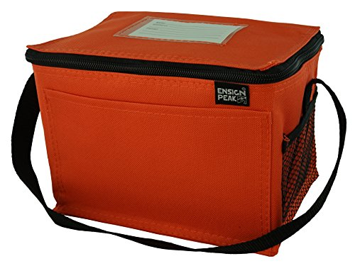 Insulated Lunch Cooler Bag, Orange