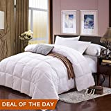 Twin Size White Goose Down Comforter Winter Duvet Insert Luxury Cotton Cover Hypoallergenic Box Stitched Protects Against Dust Mites and Allergens Blanket (Twin, White)
