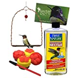 Handheld Hummingbird Feeder Kit- Everything You Need to Hand-Feed Hummingbirds (Clear Nectar)