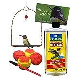 Handheld Hummingbird Feeder Kit- Everything You Need to Hand-Feed Hummingbirds (Clear Nectar)