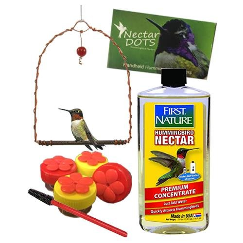 Handheld Hummingbird Feeder Kit- Everything You Need to Hand-Feed Hummingbirds (Clear Nectar) by Nectar DOTS
